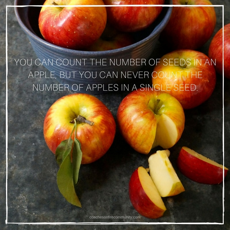 You-can-count-the-number-of-seeds-in-an-apple-but-you-can-never-count-the-number-of-apples-in-a-single-seed.-min