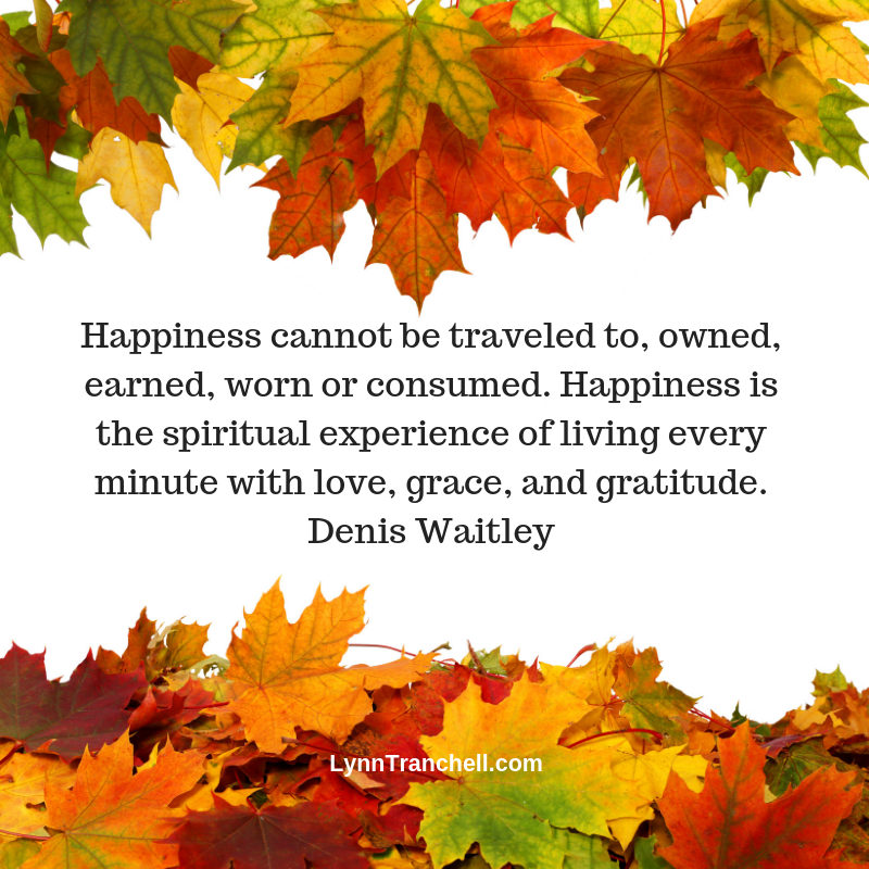 Happiness cannot be traveled to, owned, earned, worn or consumed. Happiness is the spiritual experience of living every minute with love, grace, and gratitude. Denis Waitley