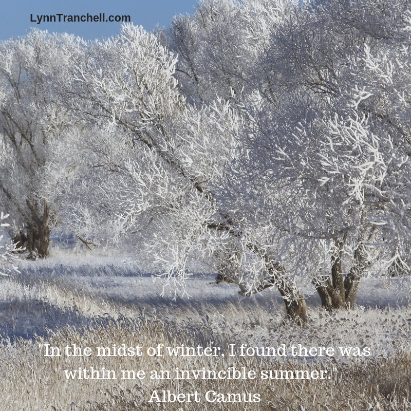 In the midst of winter, I found there was within me an invincible summer. Albert Camus