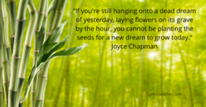 quote by Joyce Chapman about planting seeds in the now.