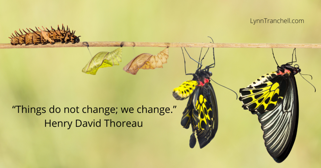 picture of butterfly transformation with Thoreau change quote