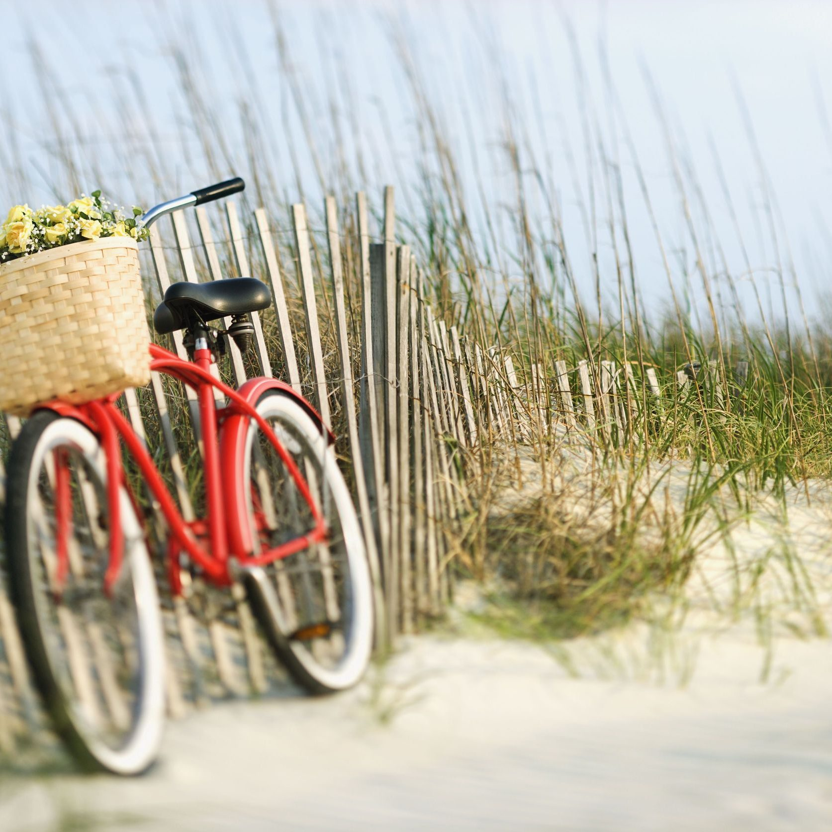 2231820 - red vintage bicycle with basket and flowers lleaning against wooden fence at beach.